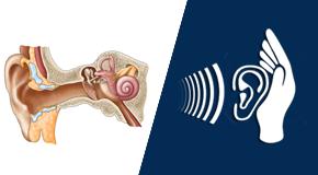 Approccio clinico alle disabilità sensoriali uditive