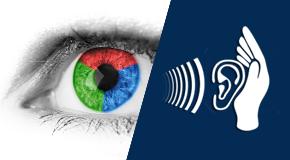 Approccio al trattamento riabilitativo delle disabilità visive